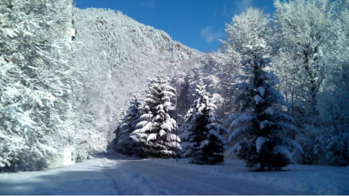 Новогодние праздники в Абхазии