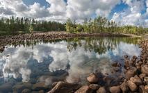 «Ладога» и Ladoga Forest