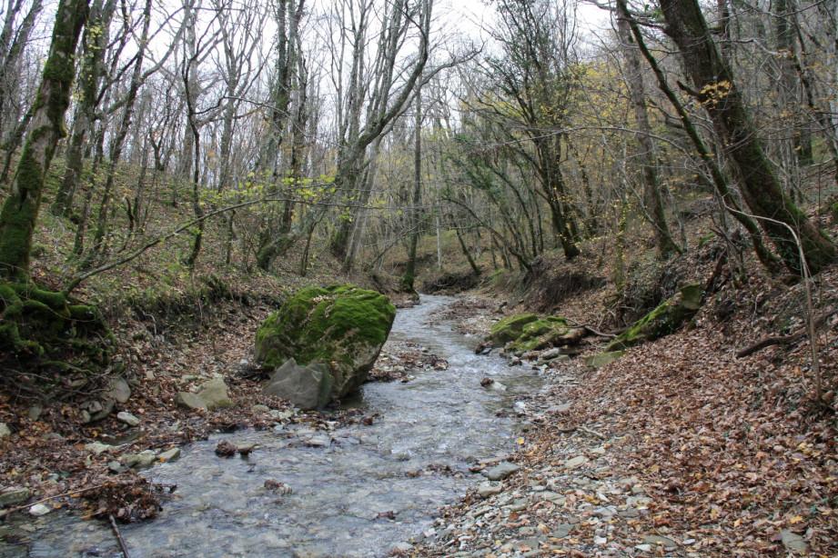 Балка Прохаскина, приток Тешебса