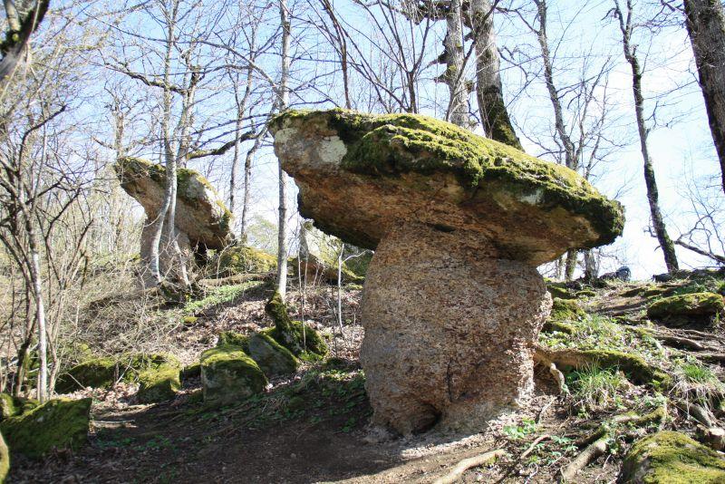 Каменные грибы, дольмены и менгиры!